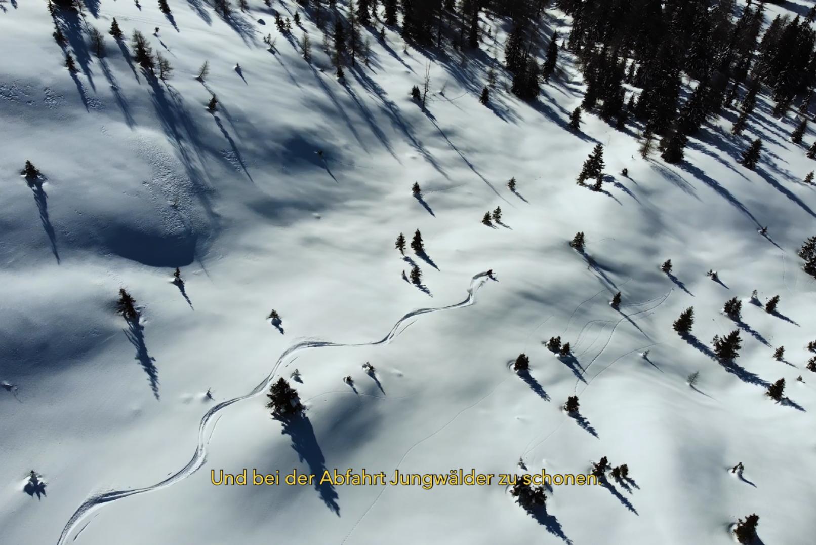Wintersport trifft Wild & Wald