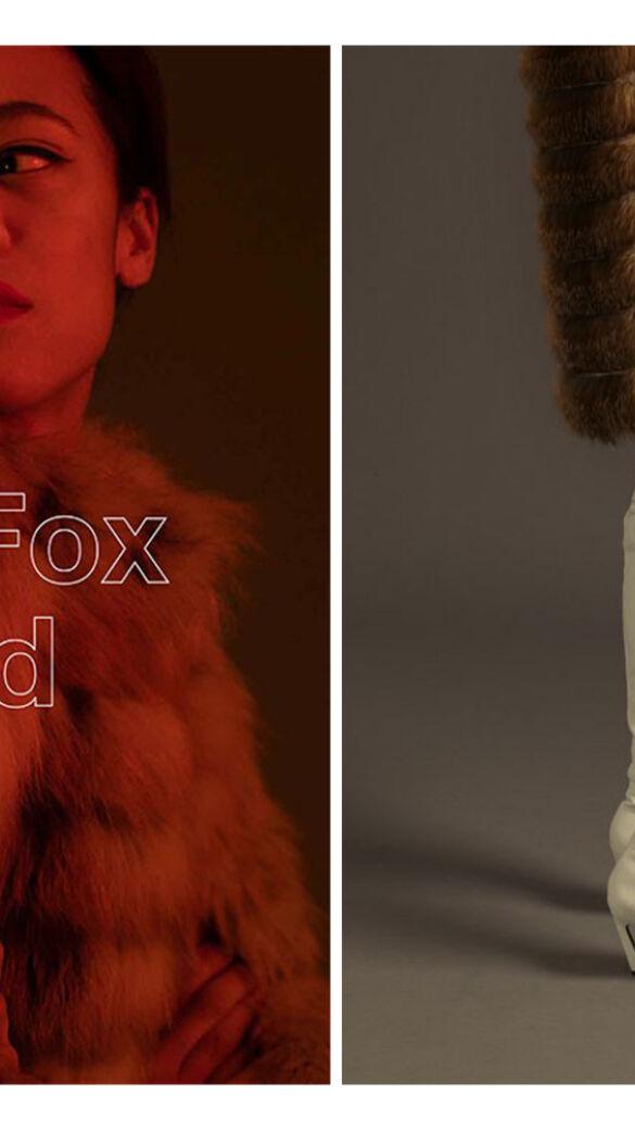 Red Fox Austria Award 2021 - die Modelle!
