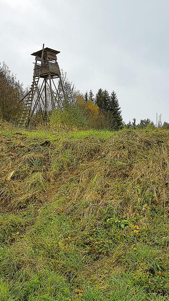 Hochstand mit gutem Zugang - Führt terrassenartiges Terrain oder eine Böschung in die Nähe eines Sitzes, kann dies als unauffälliger Zugang genutzt werden. - © Dominik Steinhauser