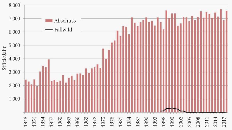 Lebensraum-Serie: Murmeltier - Jährlicher Abschuss von Murmeltieren in Österreich von 1948 bis 2018 sowie Fallwild seit 1995. Die Strecke stieg in den 1960er-Jahren, ausgehend von rund 2.300 Stück, leicht an. In den 1970er- und 1980er-Jahren erfolgte ein starker Streckenanstieg. Danach hielt sich die Jahresstrecke auf einem Niveau um etwa 7.000 Stück. Der Maximalabschuss mit 7.684 Stück wurde im Jahr 2016 dokumentiert, der geringste Abschuss im Jahr 1952 (1.959 Stück). Die Anzahl des seit 1995 erfassten Fallwildes weist lediglich für den Zeitraum 1995 bis 2003 Werte über 90 Stück auf, mit maximal 332 Stück im Jahr 1999. Danach lagen die Fallwildzahlen zwischen 3 (2009) und 22 Stück (2015). - © Grafik Reimoser
