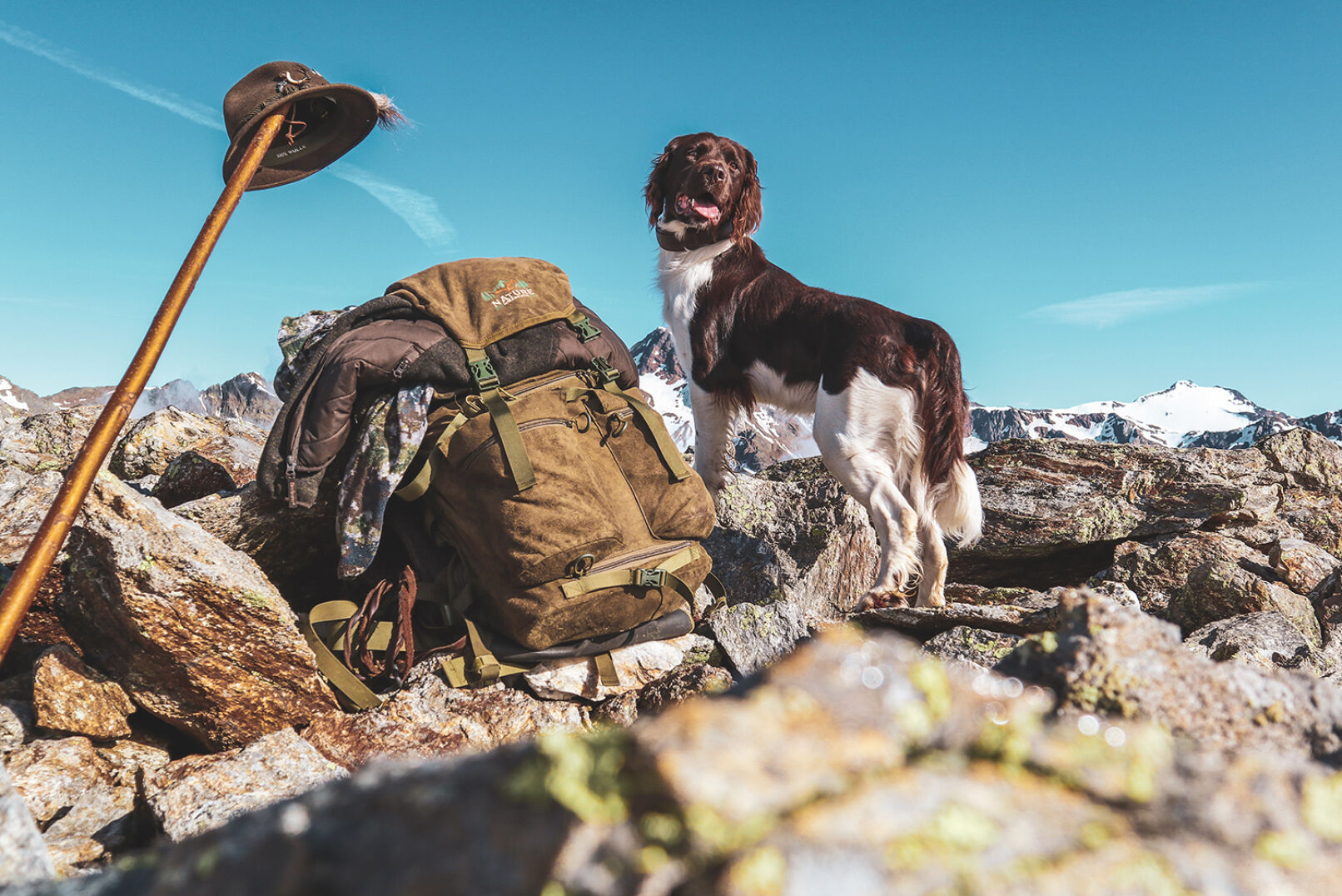 Mehr Fotos ihres Jagdgefährten seht ihr auf Instagram: @into.the.forest