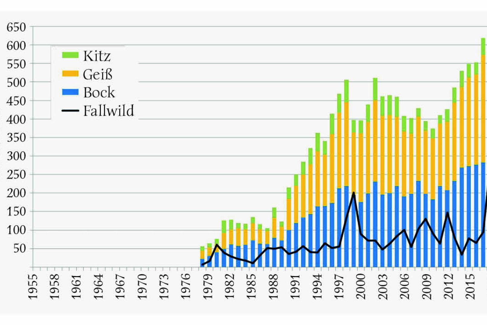 Abbildung 2 - Jährlicher Steinwildabschuss in Österreich von 1978 bis 2018, gegliedert nach Böcken, Geißen, Kitzen sowie Fallwild. - © Grafik Reimoser