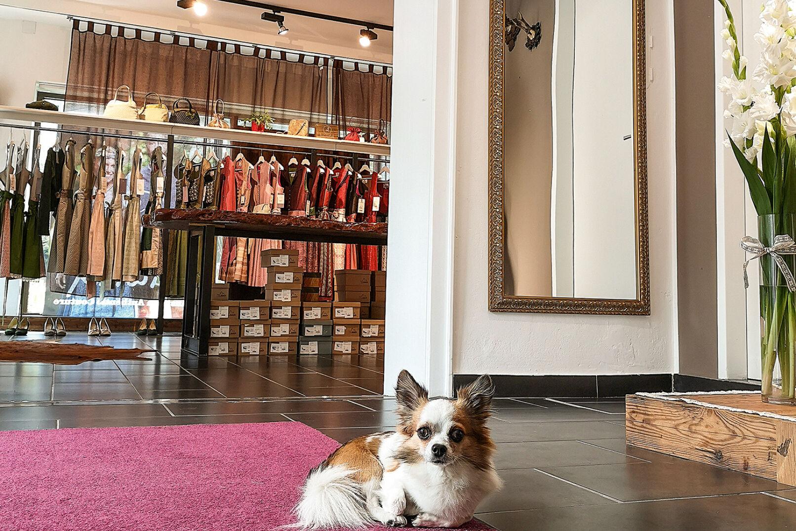 Wer in den Flagshipstore hinein möchte, wird erst einmal von Oskar begrüßt. - © Michaela Landbauer