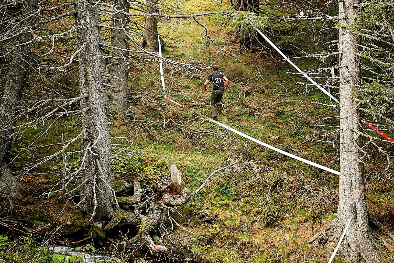 Bergauf, bergab, durch den Wald - abwechslungsreich präsentierte sich die zu absolvierende Strecke! - © Peter Rigaud