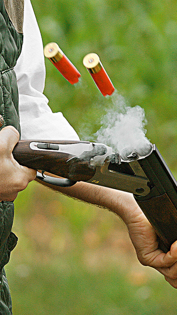 Bleimunition künftig verboten - © Kristian Bissuti