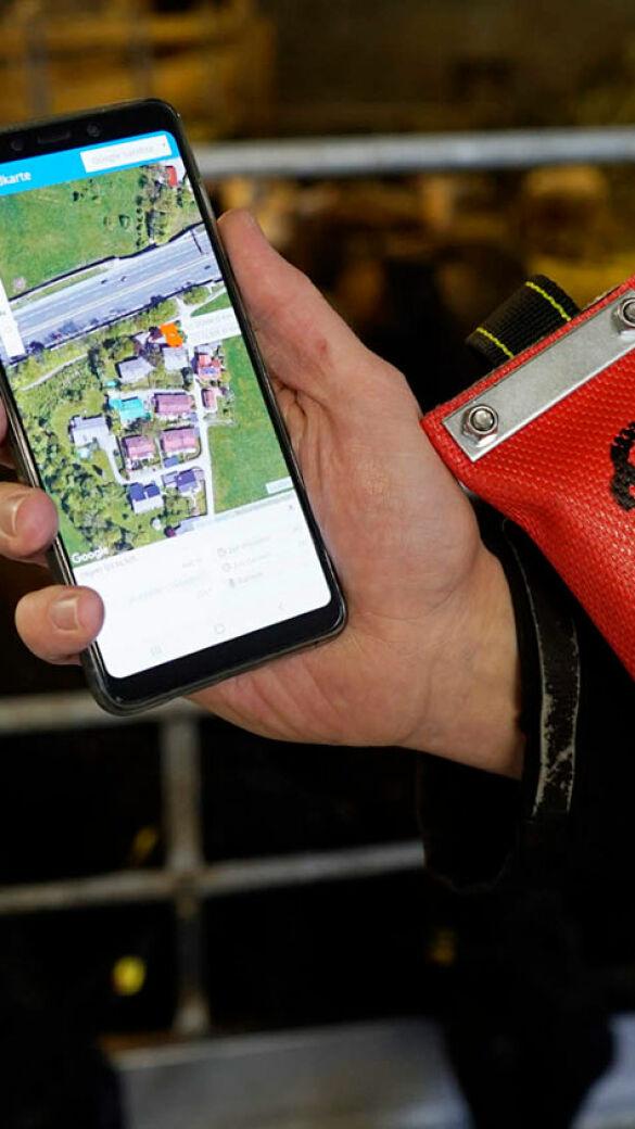 Das Land Salzburg unterstützt GPS-Halsbänder für Nutztiere.  - Das Land Salzburg unterstützt GPS-Halsbänder für Nutztiere. Die Sender an den Halsbändern zeichnen die Bewegungsmuster der Tiere auf und liefern so wertvolle Standortdaten. - © Dürnberger