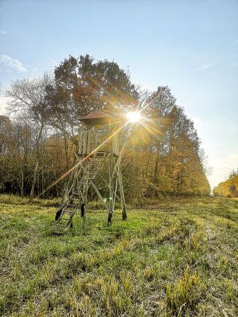 Hochstand in den Wäldern Rumäniens