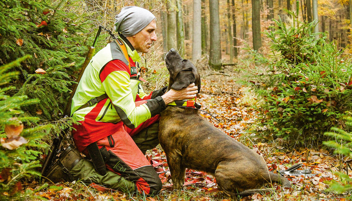 Jagdhunde im Wolfsgebiet  - © Michael Back